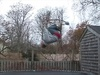 tramp bike flip - Click To Enlarge Picture