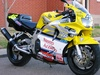 1997 cbr 900rr - Click To Enlarge Picture