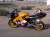 Honda CBR 600 F3 Rep - Click To Enlarge Picture