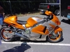 Orange Busa - Click To Enlarge Picture