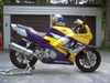 1996 CBR 600 F3 - Click To Enlarge Picture