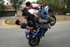 Falomir Stunt Rider - Click To Enlarge Picture