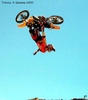 Travis Pastrana - Click To Enlarge Picture