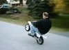 Z50 Wheelies - Click To Download Video