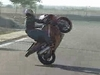 US Stunt Riders - Click To Download Video