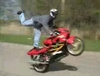 Local Stunt Riders - Click To Download Video