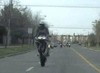 TL Wheelie - Click To Download Video